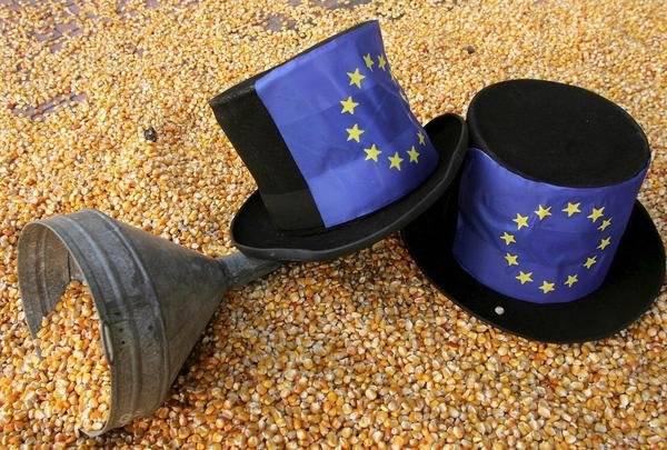 El gobierno sigue prefiriendo los transgénicos a la agricultura sostenible