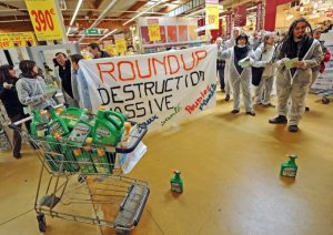 dans-les-rayons-de-castorama-bron-operation-coup-de-poing-contre-le-roundup-herbicide-de-la-firme-monsanto-photo-stephane-guiochon
